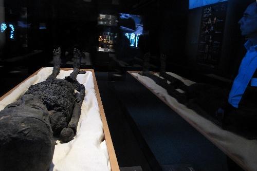 0件物品再现了古埃及18王朝的皇室葬礼习俗.1976年至1979年在美图片