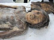 韩发现保存500年女木乃伊 手袋现身陪葬品中(图)