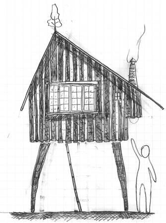 素描凤凰的画法步骤图片