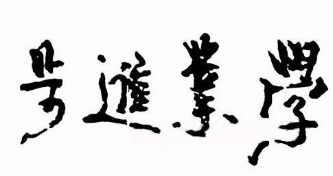 天王刘德华的书法图片